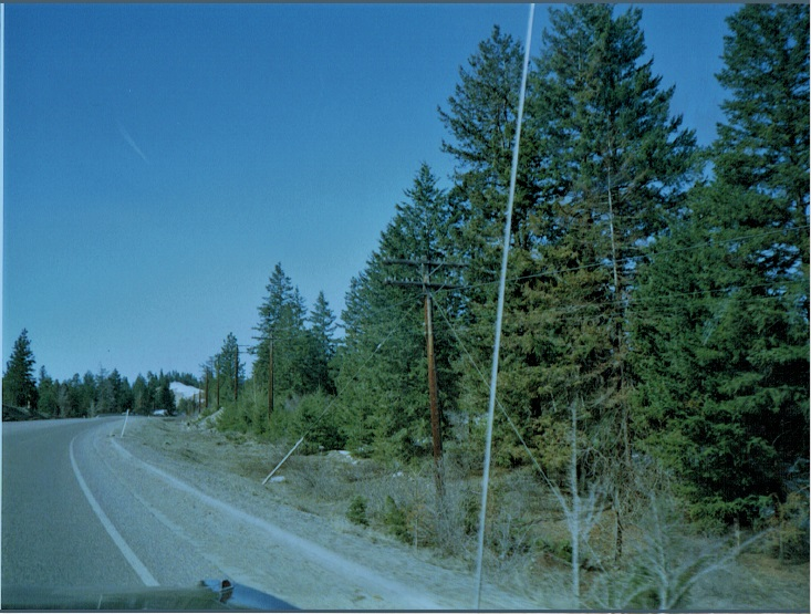 bctel-telephone-poles-highway-3-princeton-british-columbia-1992-1